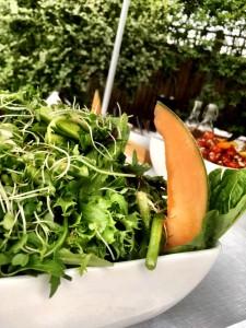 Surrey - salad